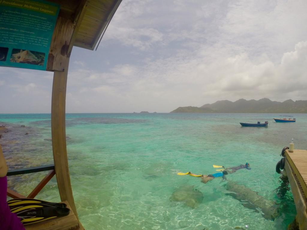 Fantastic snorkeling at Crab Cay
