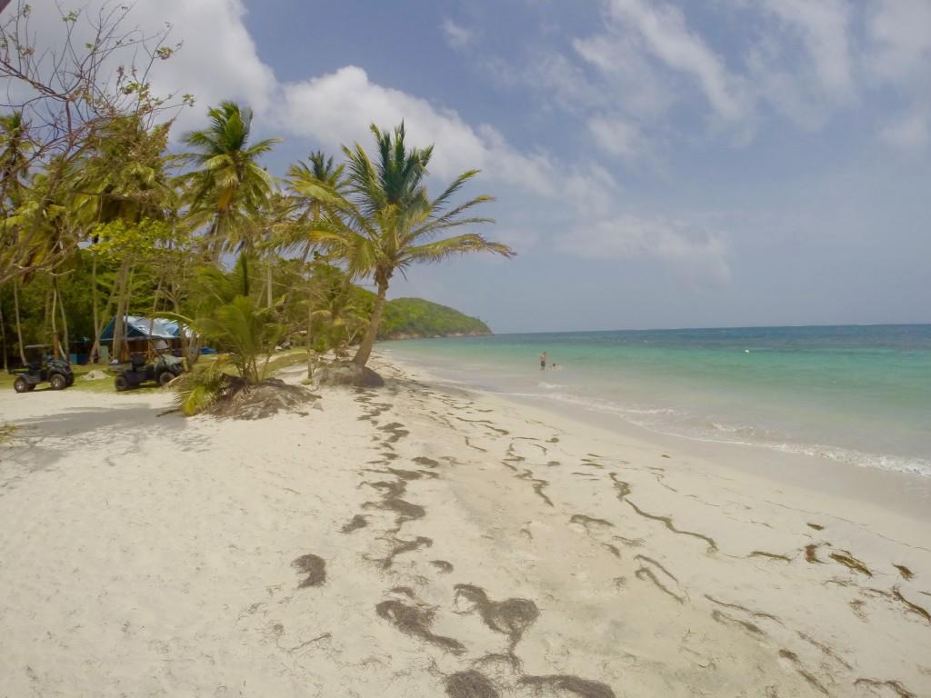 Incredible beach on Manzanillo Bay