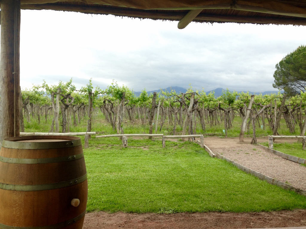 A Little Wine in the Countryside: Mendoza (Lujan de Cuyo)