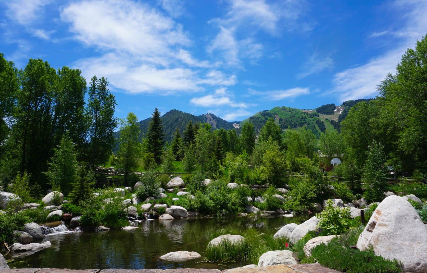 Aspen: A Natural Wonder