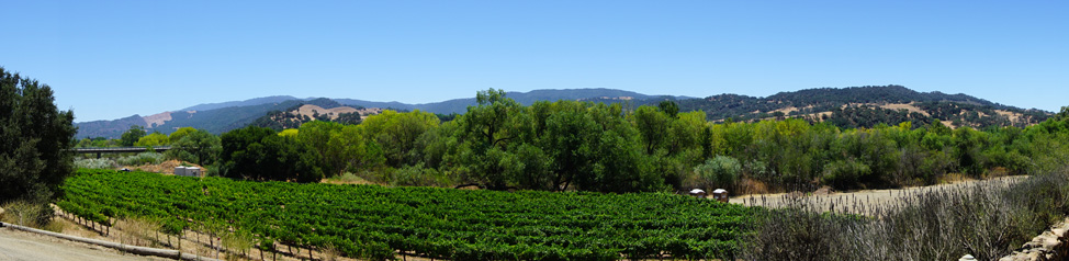 Stay another day to enjoy the wineries nearby! - Solvang