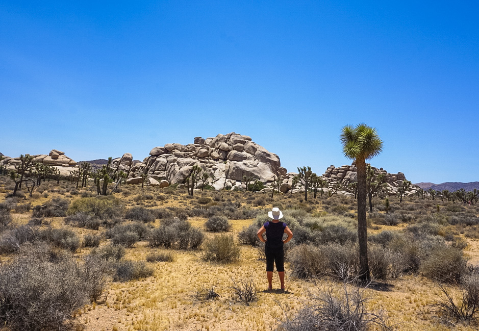 How We Survived Joshua Tree During a Summer Heat Wave